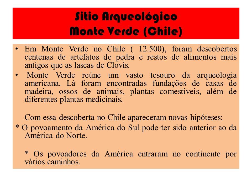 Sitio Arqueológico Monte Verde (Chile)
