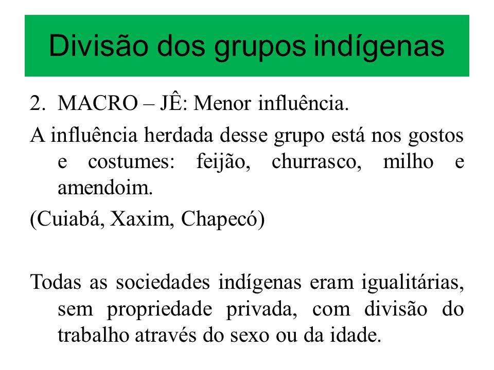 Divisão dos grupos indígenas