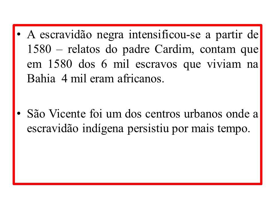 A escravidão negra intensificou-se a partir de 1580 – relatos do padre Cardim, contam que em 1580 dos 6 mil escravos que viviam na Bahia 4 mil eram africanos.