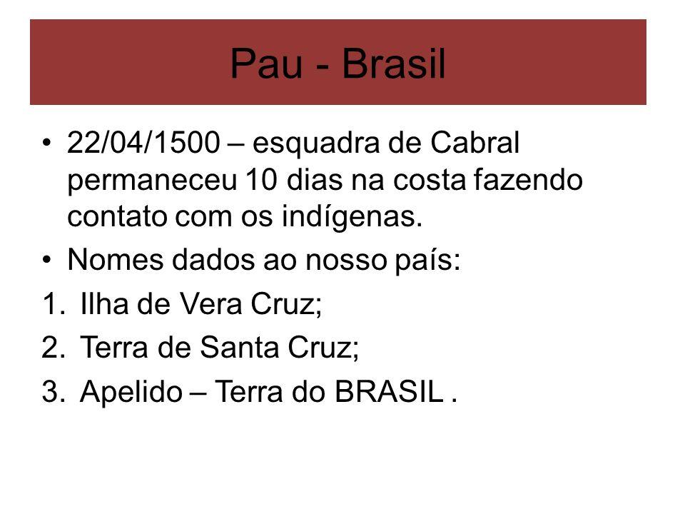 Pau - Brasil22/04/1500 – esquadra de Cabral permaneceu 10 dias na costa fazendo contato com os indígenas.