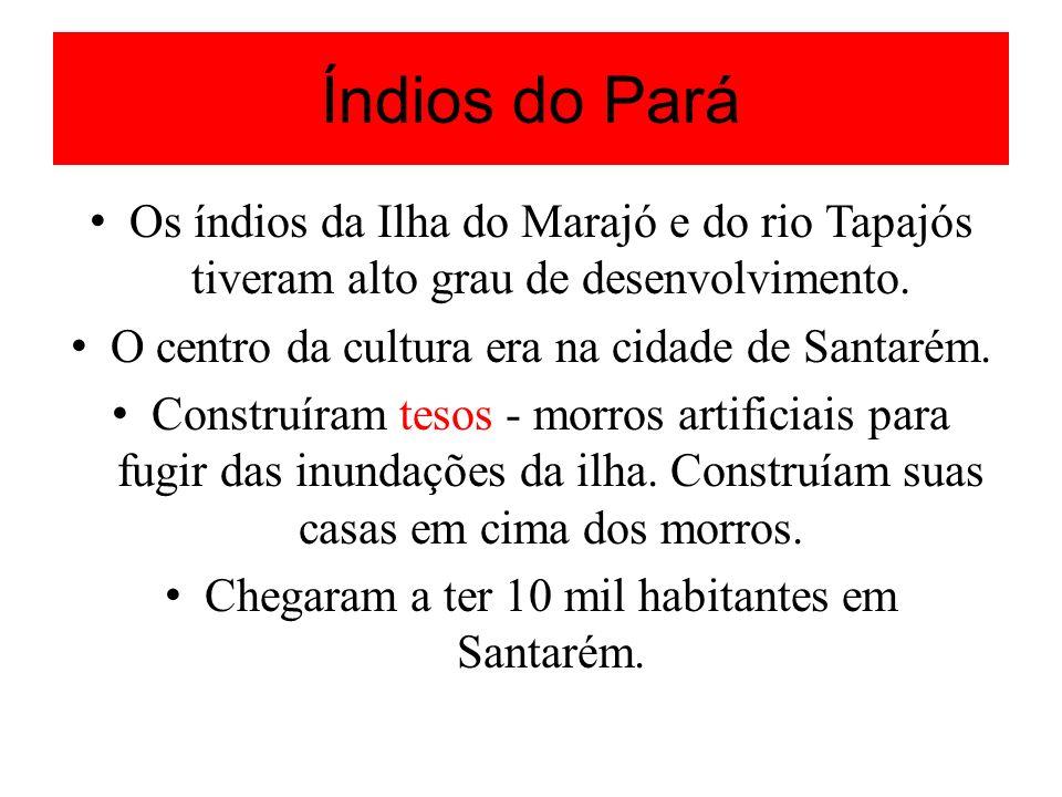 Índios do Pará Os índios da Ilha do Marajó e do rio Tapajós tiveram alto grau de desenvolvimento. O centro da cultura era na cidade de Santarém.