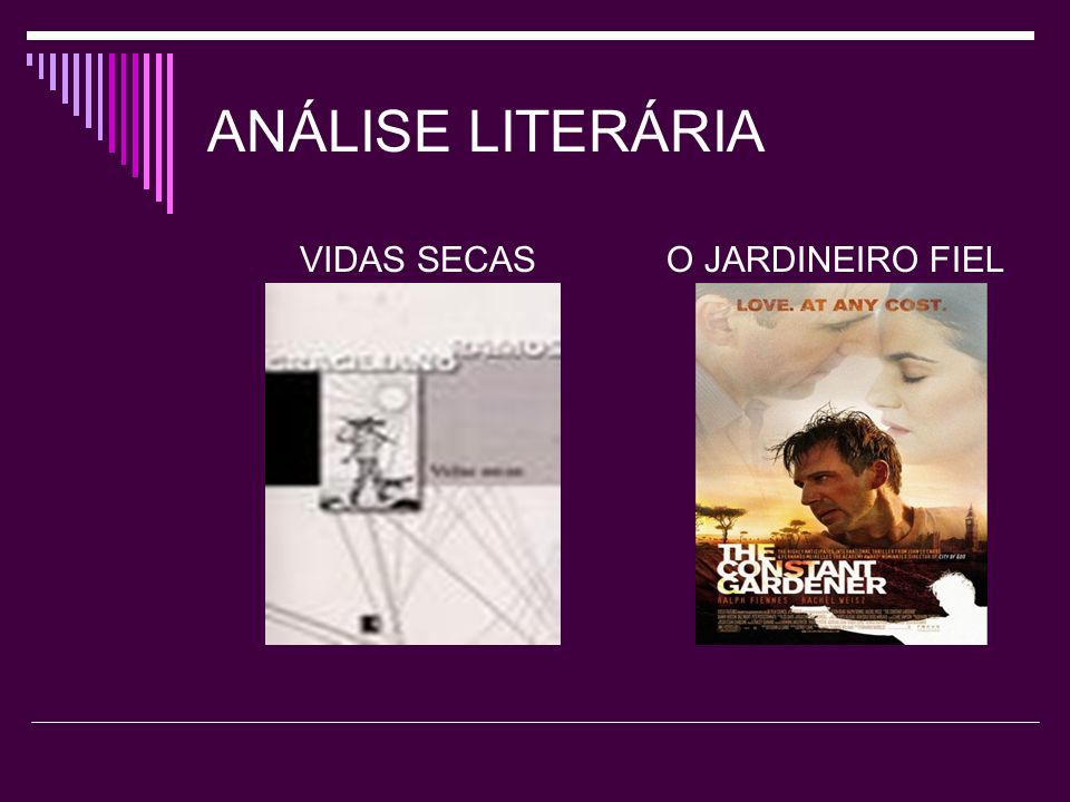 ANÁLISE LITERÁRIA VIDAS SECAS O JARDINEIRO FIEL
