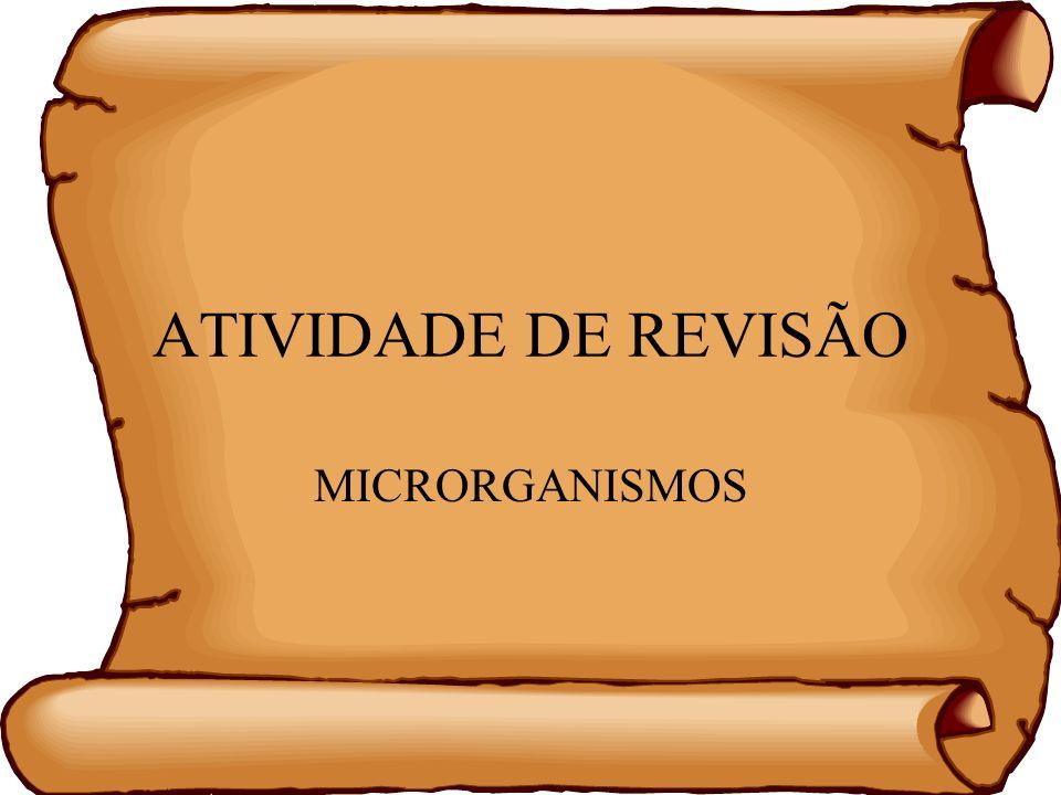 ATIVIDADE DE REVISÃO MICRORGANISMOS