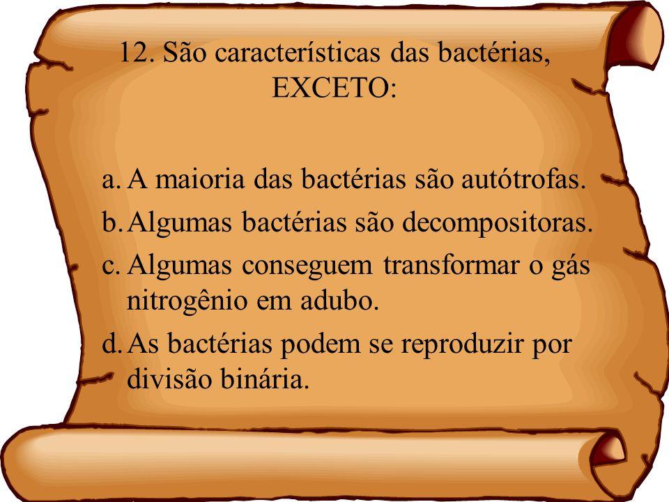 12. São características das bactérias, EXCETO: