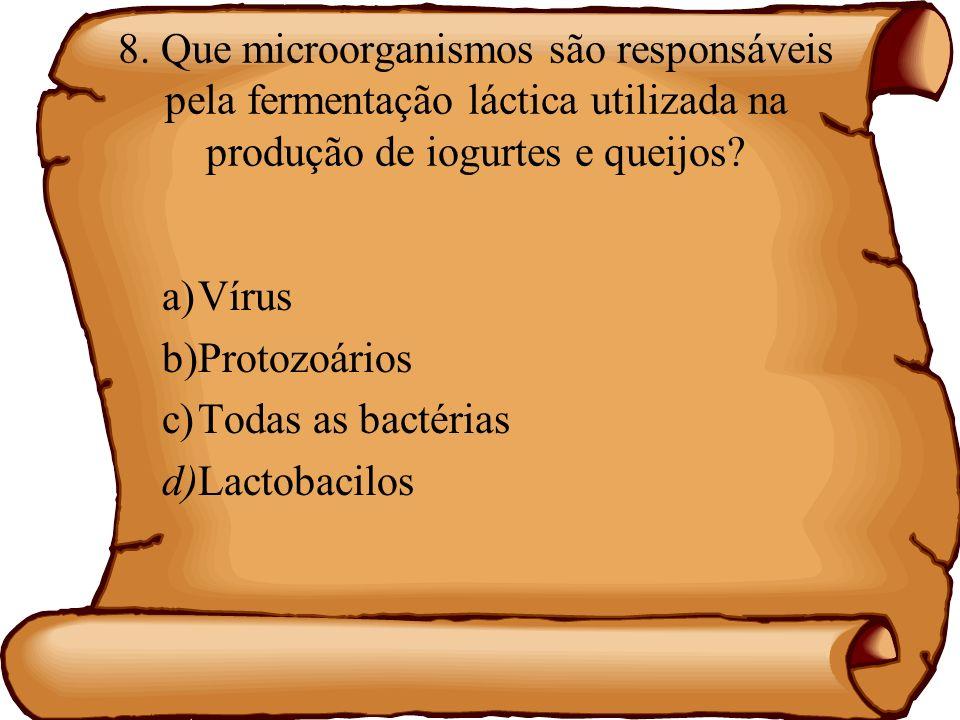 8. Que microorganismos são responsáveis pela fermentação láctica utilizada na produção de iogurtes e queijos