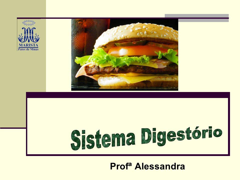 Sistema Digestório Profª Alessandra