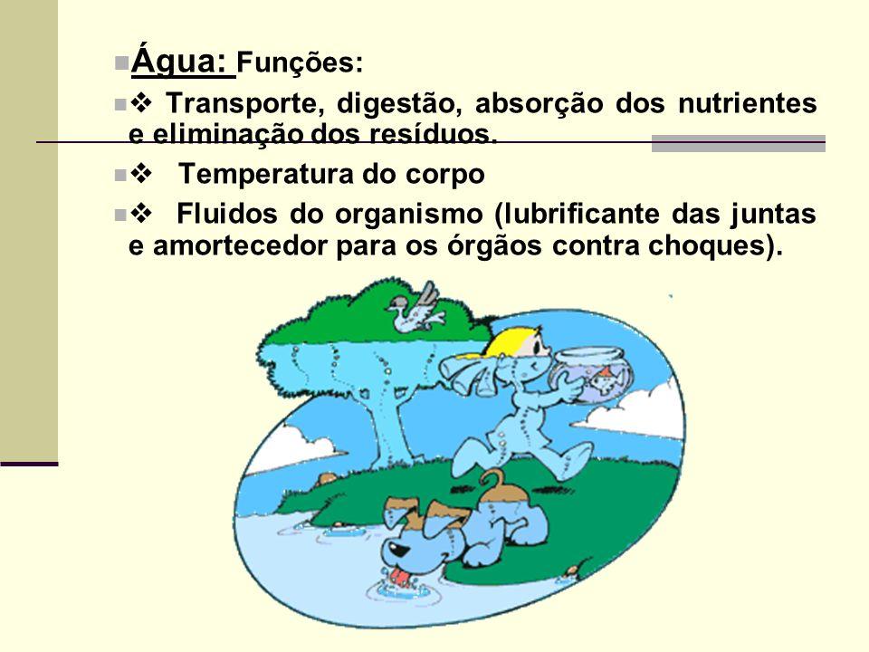 Água: Funções:  Transporte, digestão, absorção dos nutrientes e eliminação dos resíduos.  Temperatura do corpo.