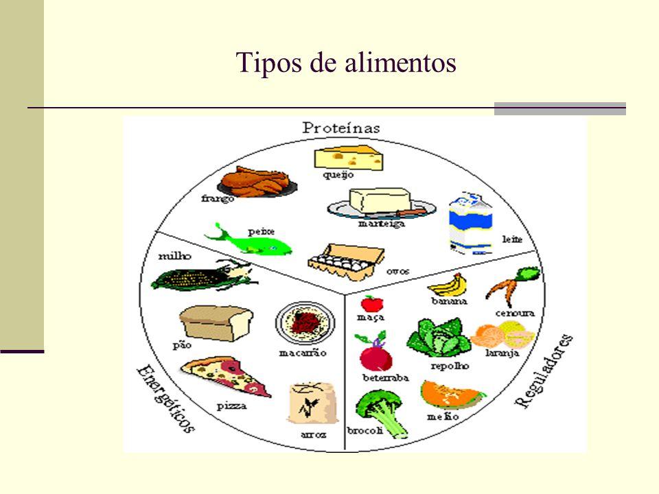 Tipos de alimentos