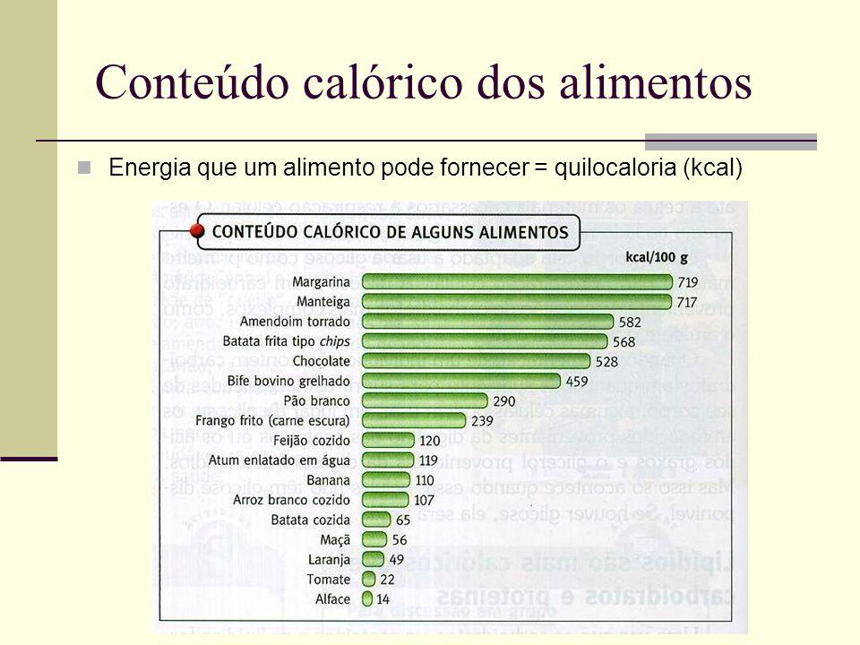Conteúdo calórico dos alimentos
