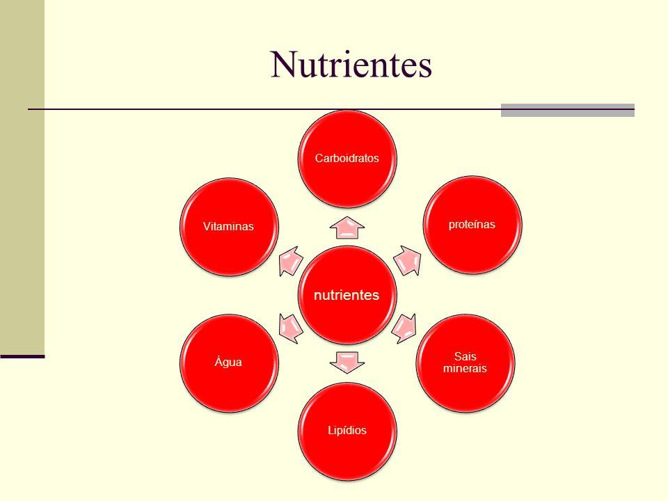Nutrientes nutrientes Carboidratos proteínas Sais minerais Lipídios