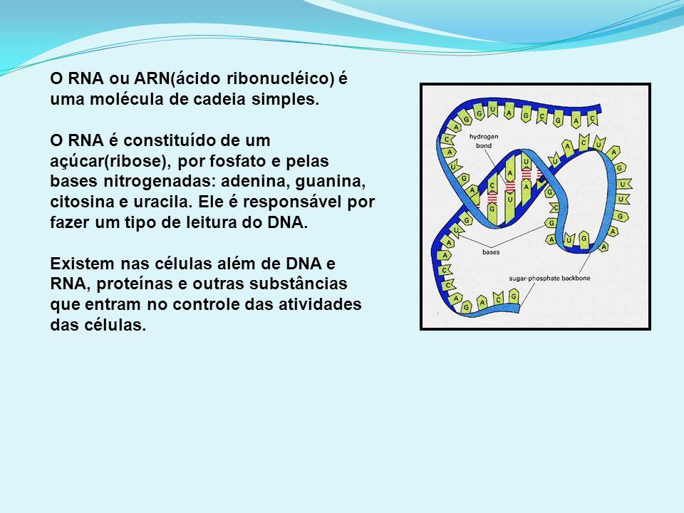 O RNA ou ARN(ácido ribonucléico) é uma molécula de cadeia simples