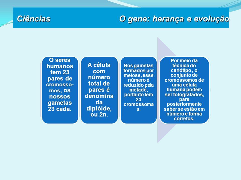 Ciências O gene: herança e evolução
