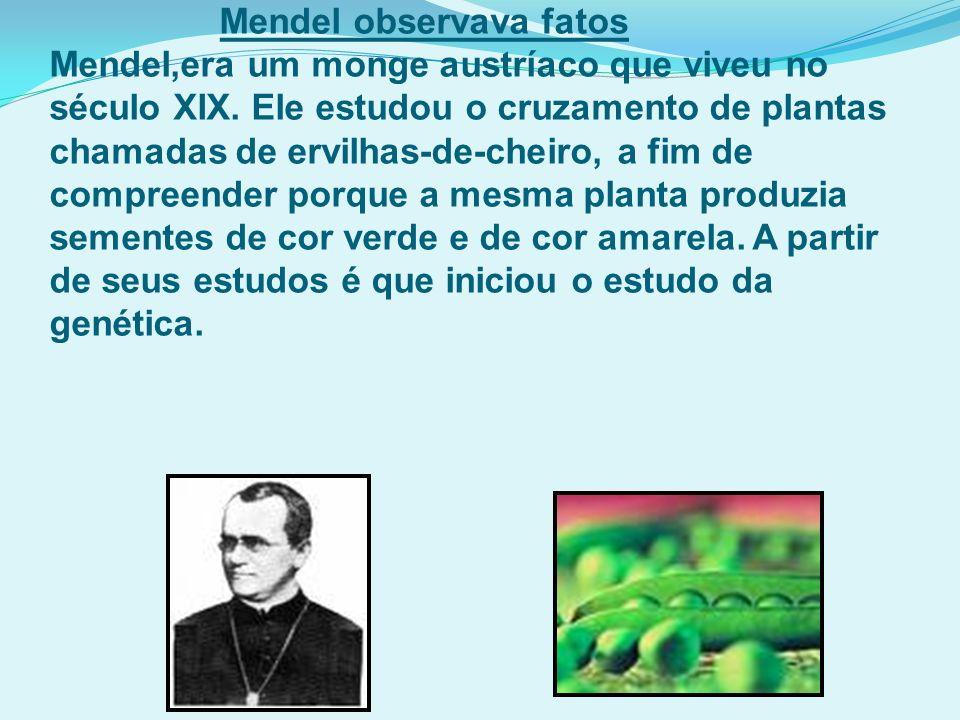 Mendel observava fatos Mendel,era um monge austríaco que viveu no século XIX.