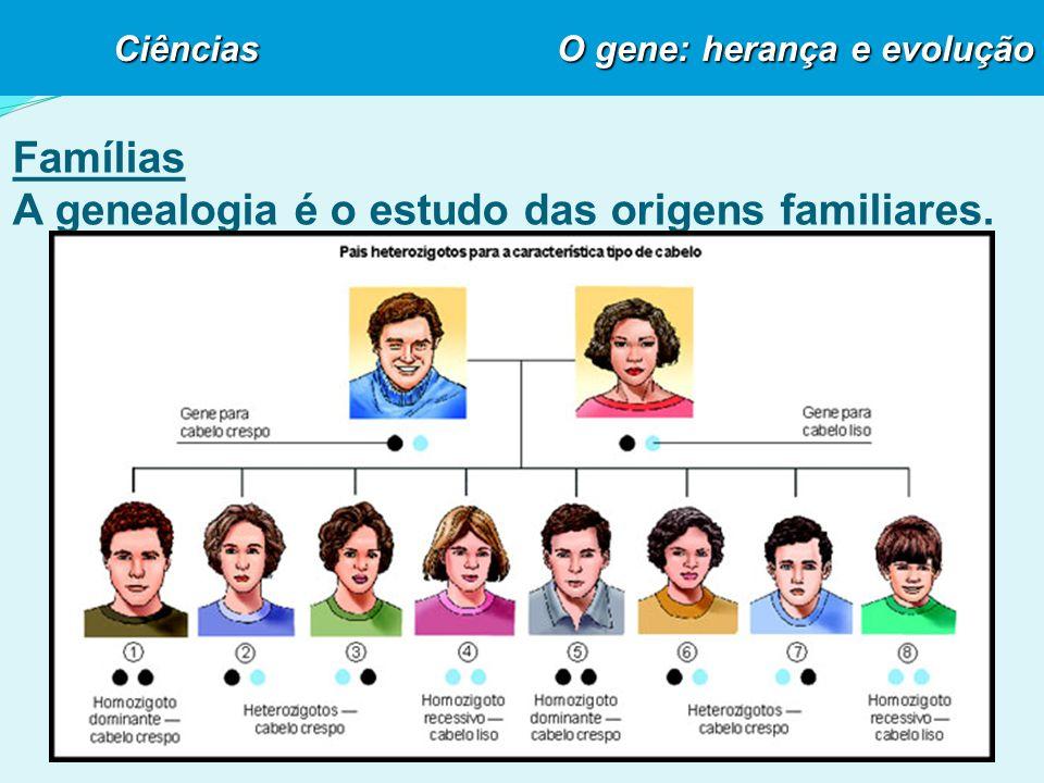 Famílias A genealogia é o estudo das origens familiares.