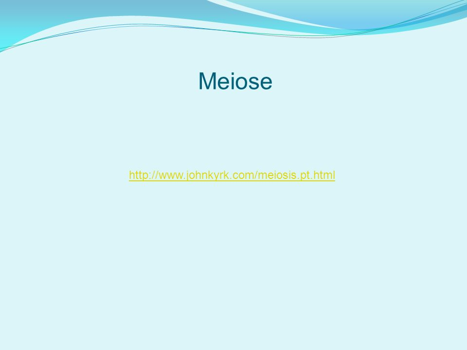 Meiose http://www.johnkyrk.com/meiosis.pt.html