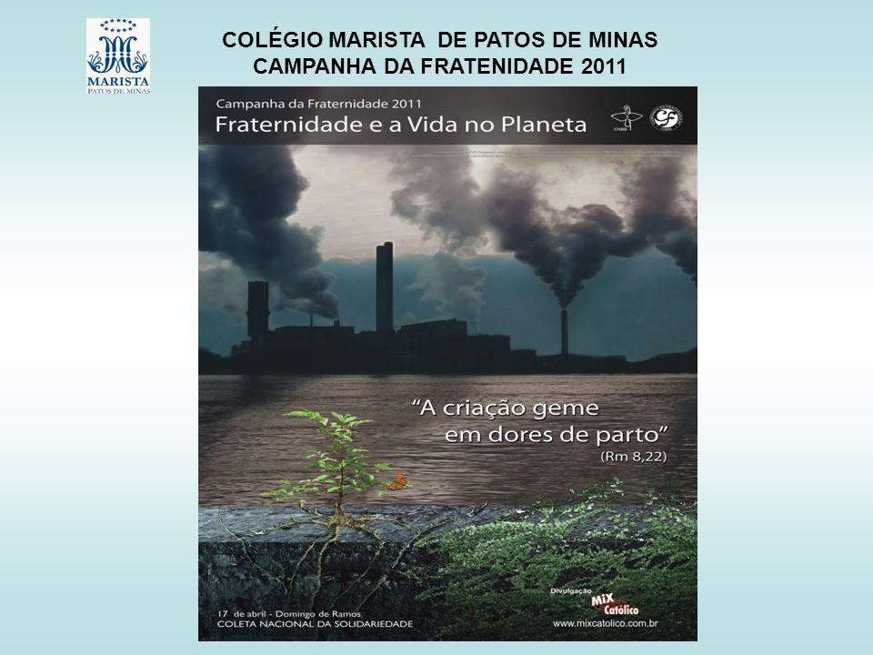 COLÉGIO MARISTA DE PATOS DE MINAS CAMPANHA DA FRATENIDADE 2011