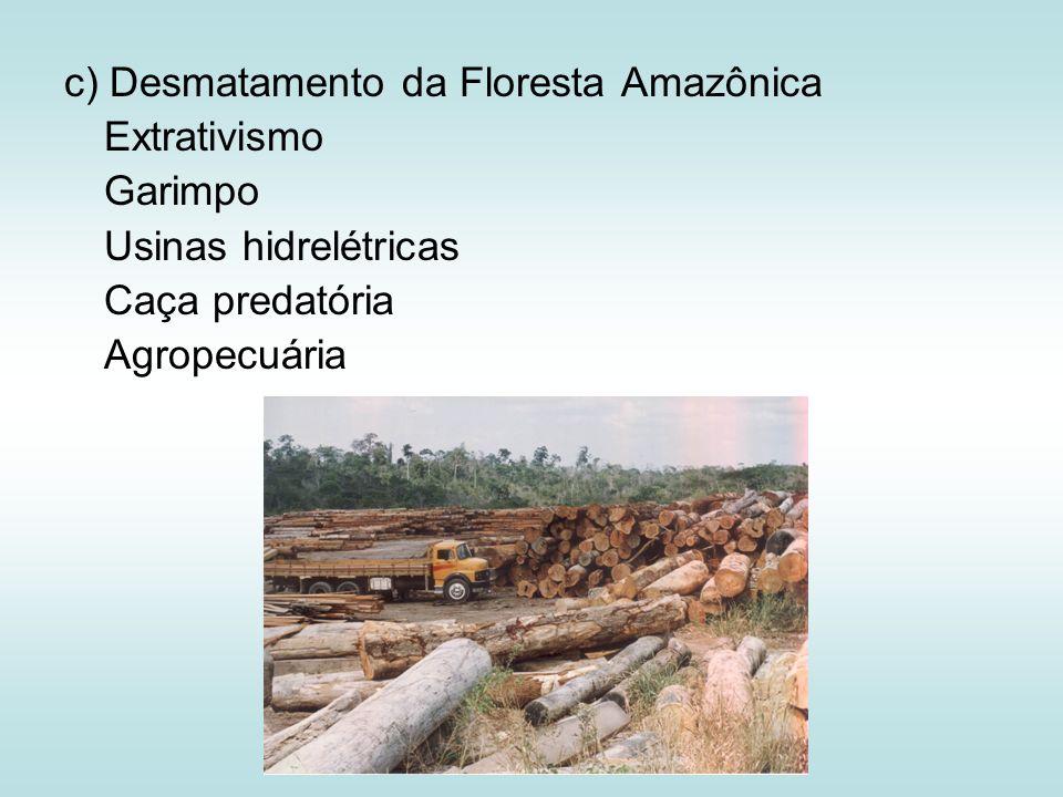 c) Desmatamento da Floresta Amazônica