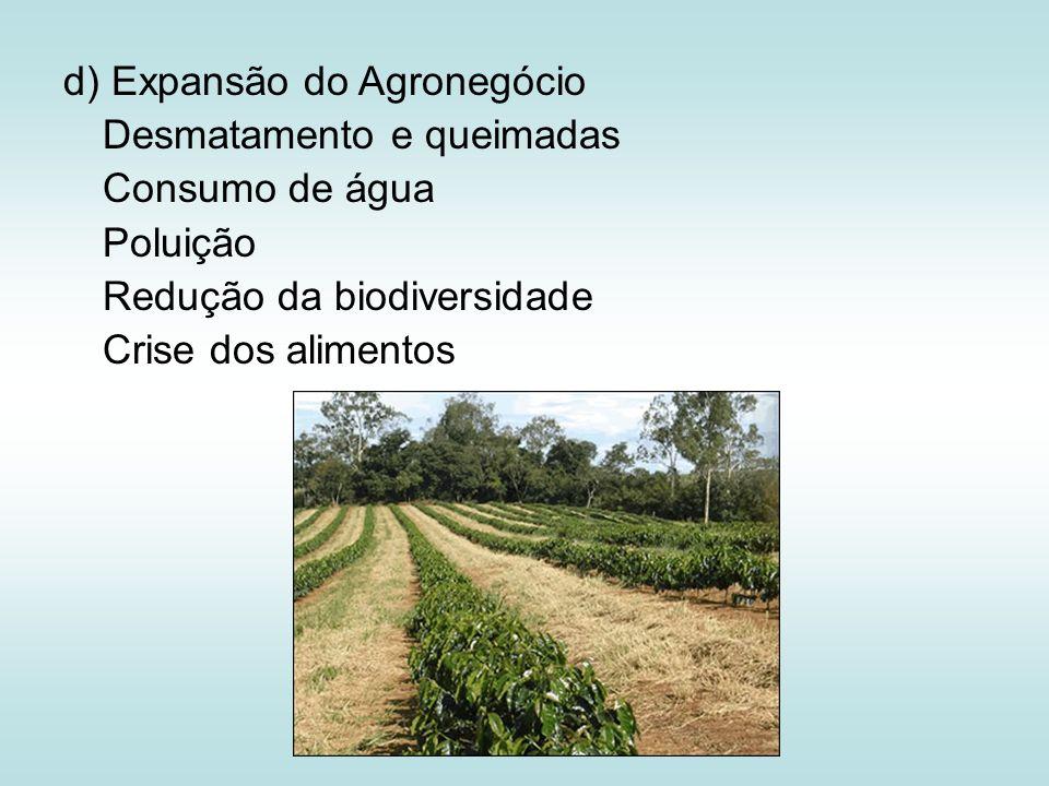 d) Expansão do Agronegócio