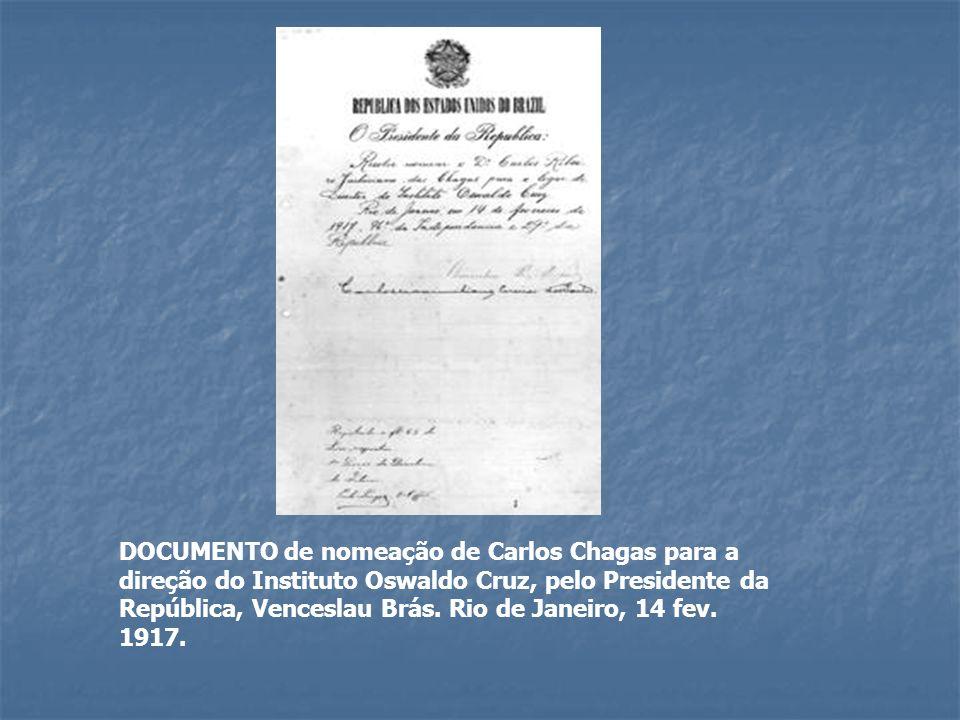 DOCUMENTO de nomeação de Carlos Chagas para a direção do Instituto Oswaldo Cruz, pelo Presidente da República, Venceslau Brás.