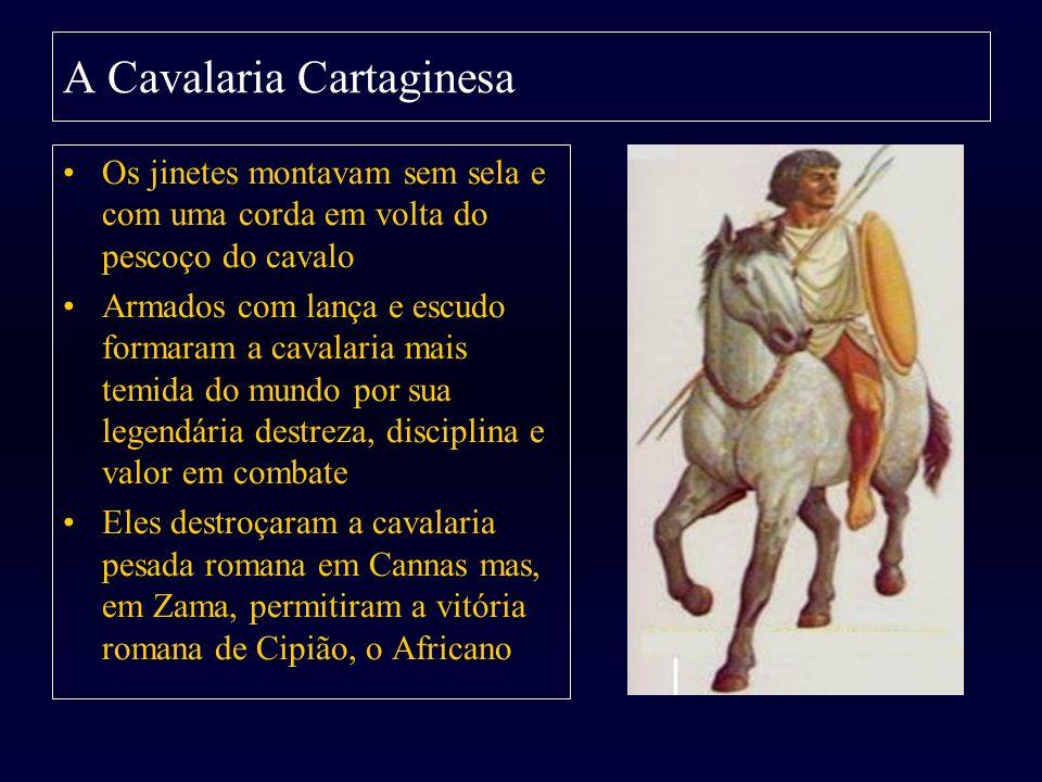 A Cavalaria Cartaginesa