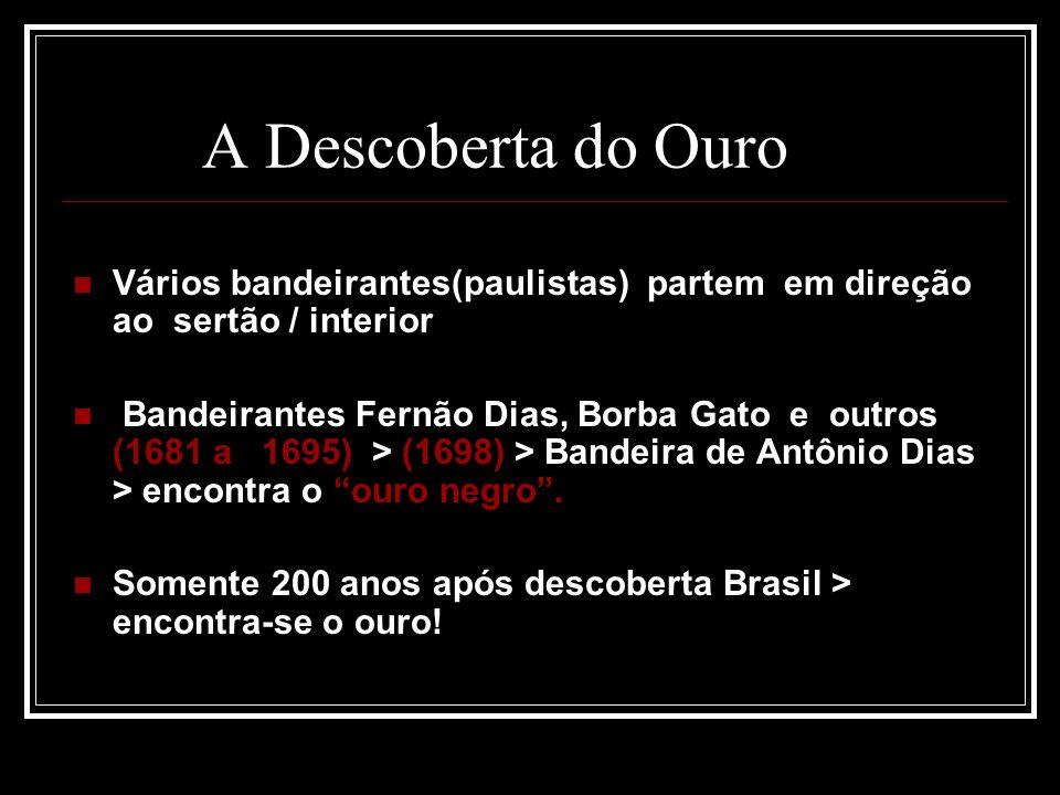 A Descoberta do Ouro Vários bandeirantes(paulistas) partem em direção ao sertão / interior.