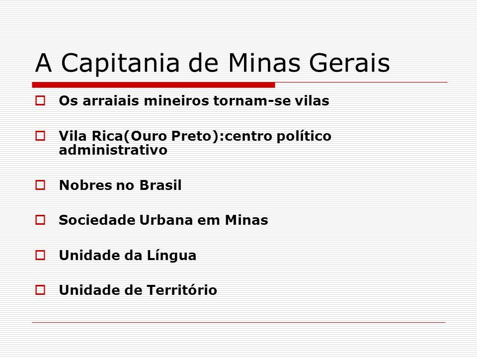 A Capitania de Minas Gerais
