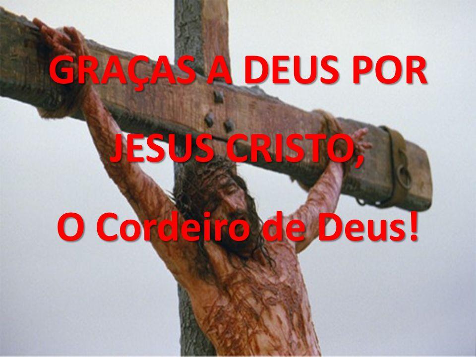 GRAÇAS A DEUS POR JESUS CRISTO, O Cordeiro de Deus!