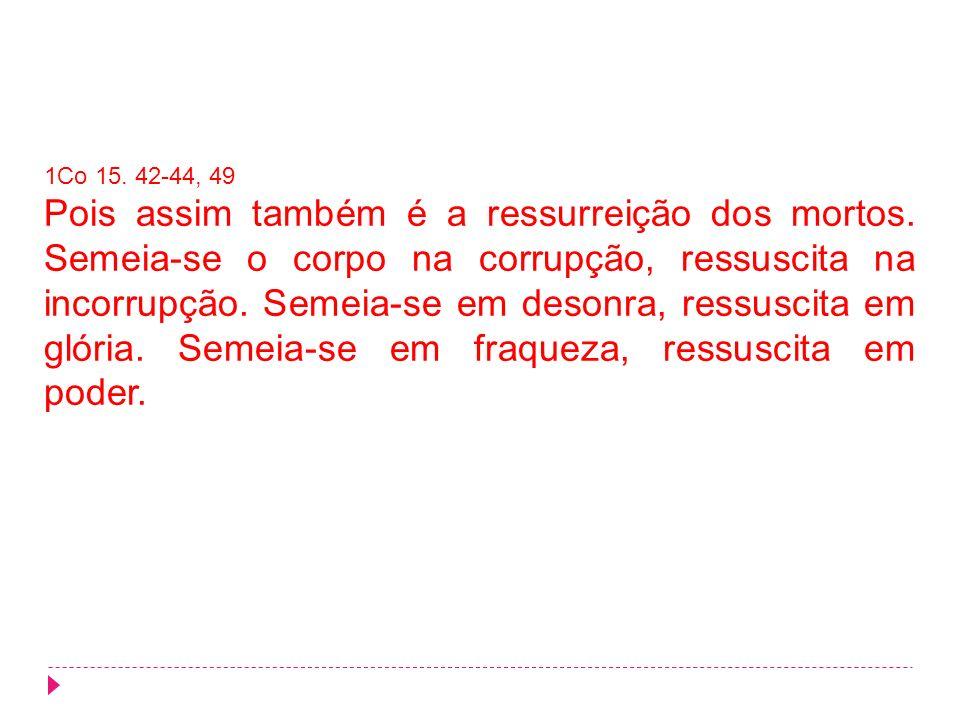 1Co 15. 42-44, 49