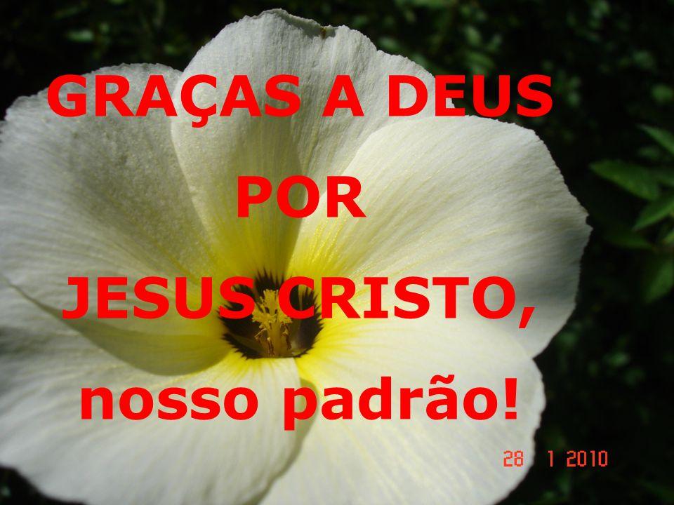JESUS CRISTO, nosso padrão!