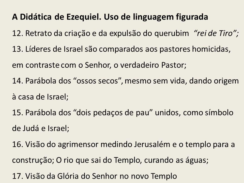 A Didática de Ezequiel. Uso de linguagem figurada