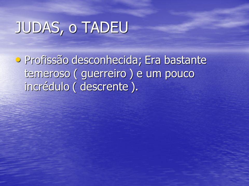 JUDAS, o TADEU Profissão desconhecida; Era bastante temeroso ( guerreiro ) e um pouco incrédulo ( descrente ).