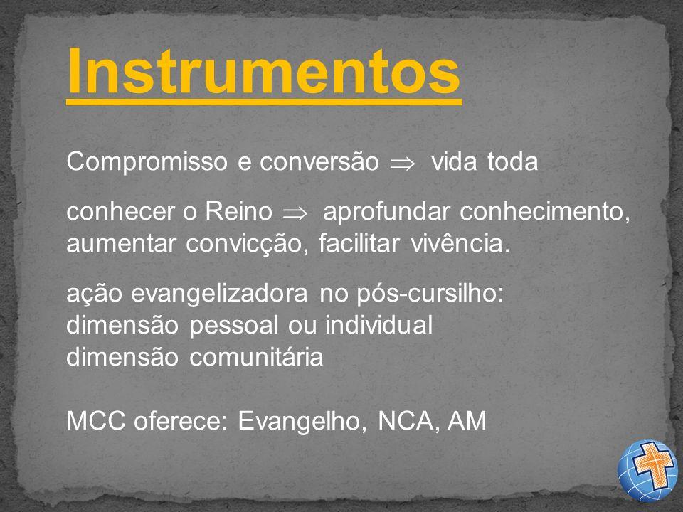 Instrumentos Compromisso e conversão  vida toda