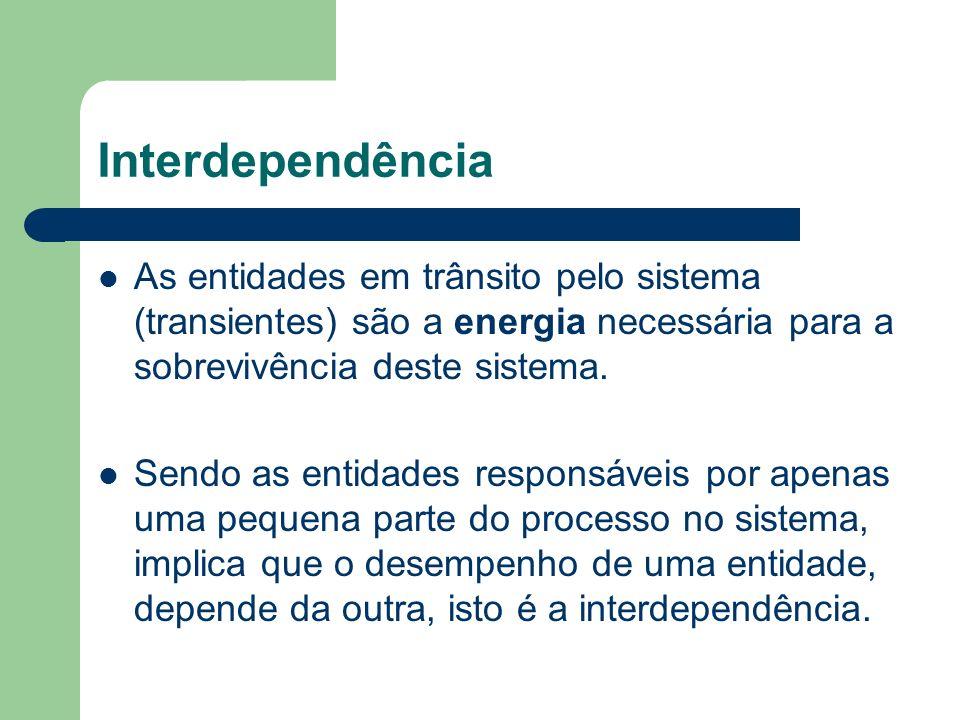 Interdependência As entidades em trânsito pelo sistema (transientes) são a energia necessária para a sobrevivência deste sistema.