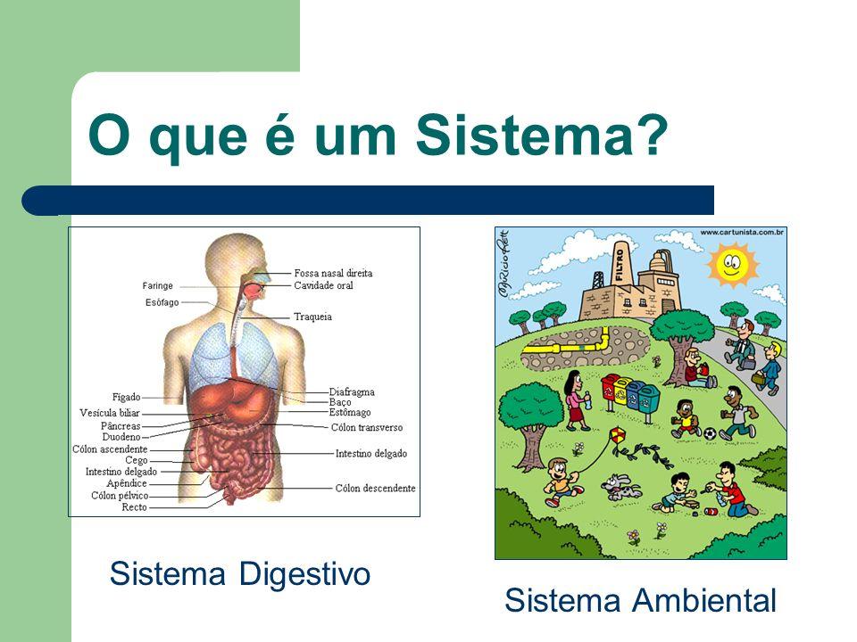O que é um Sistema Sistema Digestivo Sistema Ambiental