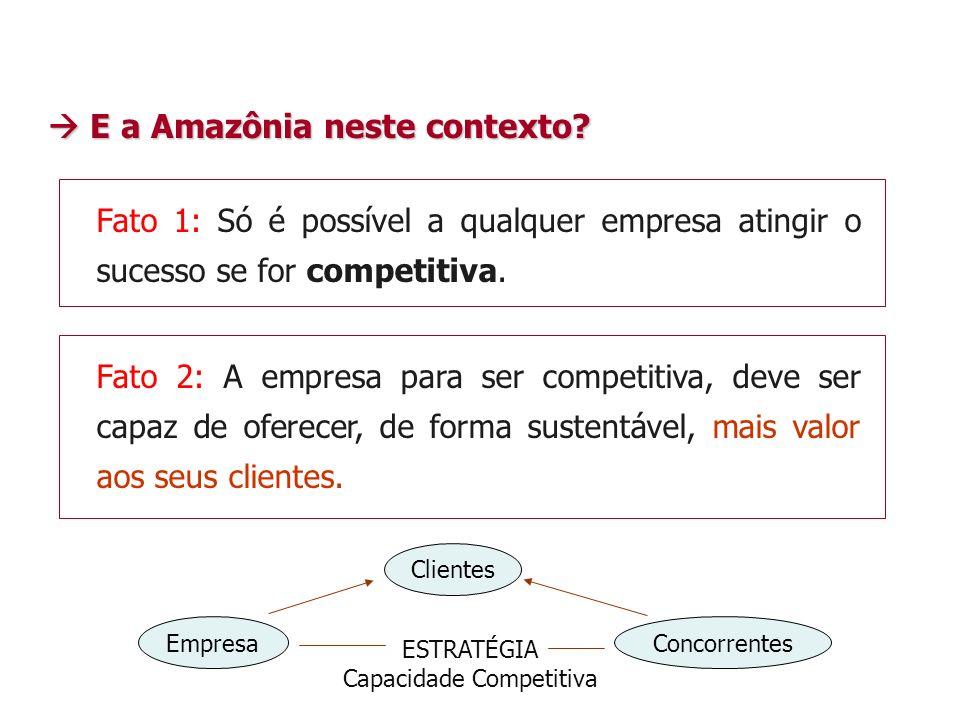 Capacidade Competitiva