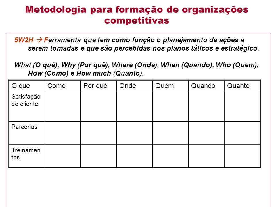 Metodologia para formação de organizações competitivas