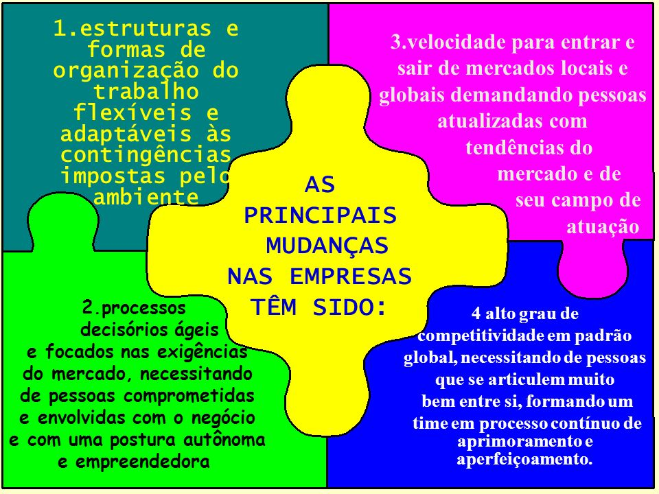 AS PRINCIPAIS MUDANÇAS NAS EMPRESAS TÊM SIDO: