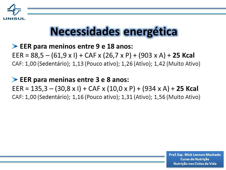 Necessidades energética