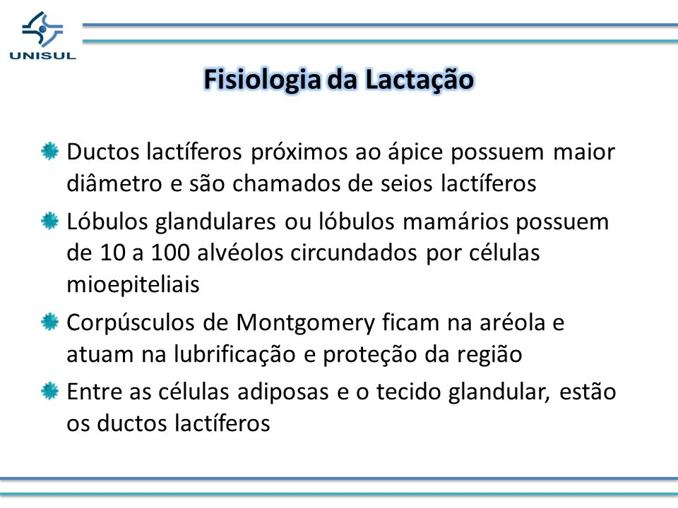 Fisiologia da Lactação