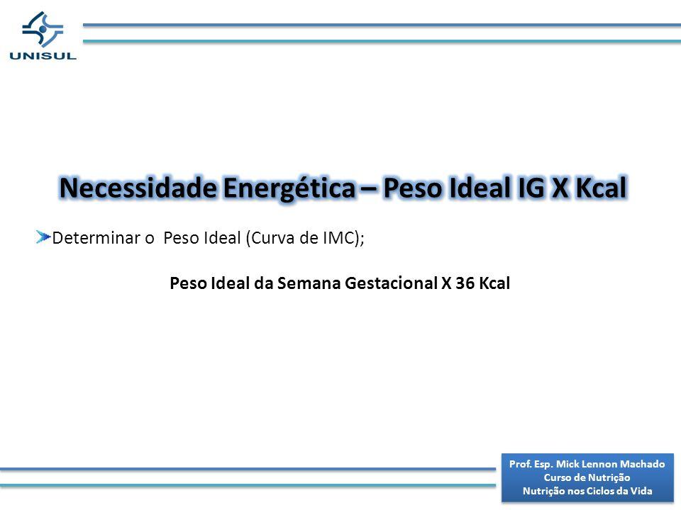 Necessidade Energética – Peso Ideal IG X Kcal
