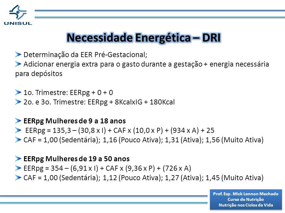 Necessidade Energética – DRI
