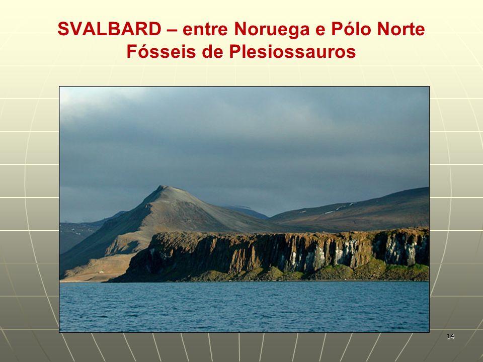 SVALBARD – entre Noruega e Pólo Norte Fósseis de Plesiossauros