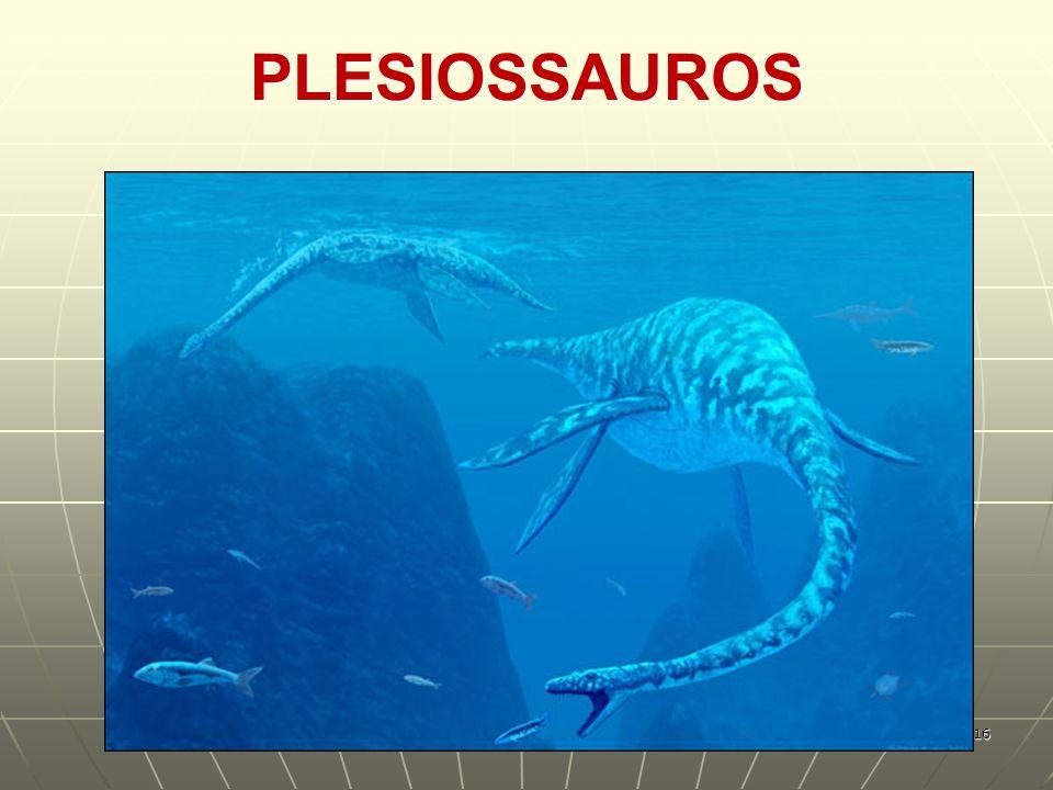 PLESIOSSAUROS