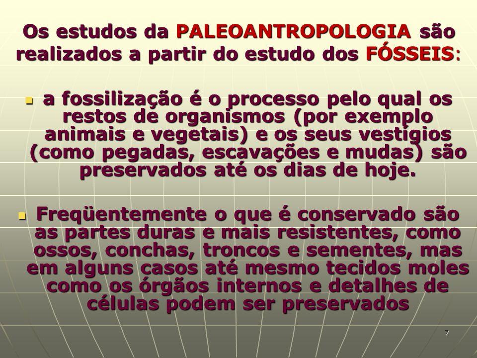 Os estudos da PALEOANTROPOLOGIA são