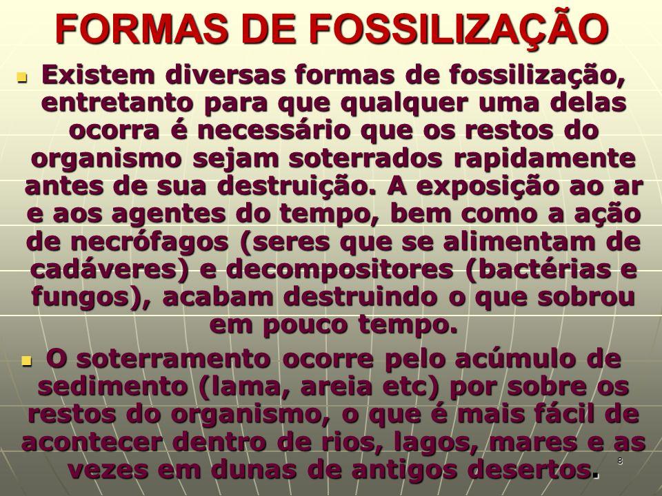 FORMAS DE FOSSILIZAÇÃO