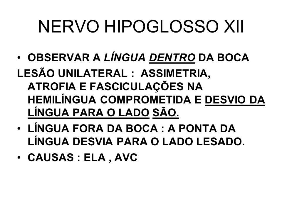 NERVO HIPOGLOSSO XII OBSERVAR A LÍNGUA DENTRO DA BOCA