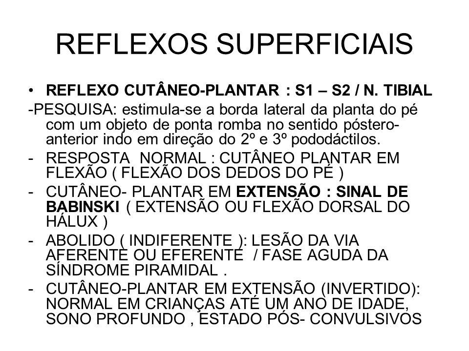 REFLEXOS SUPERFICIAIS