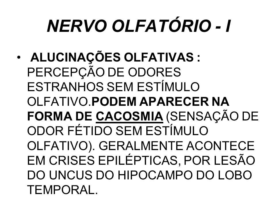 NERVO OLFATÓRIO - I
