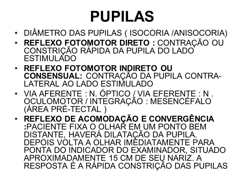 PUPILAS DIÂMETRO DAS PUPILAS ( ISOCORIA /ANISOCORIA)