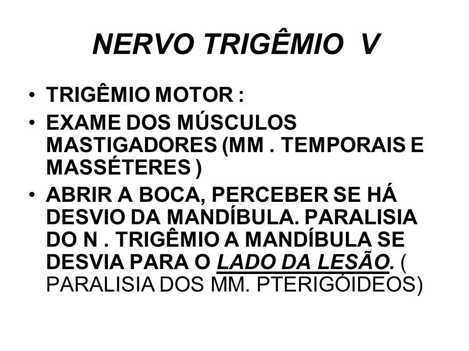 NERVO TRIGÊMIO V TRIGÊMIO MOTOR :